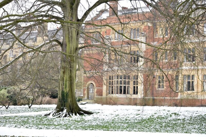 Cloister Court in the snow taken by Jen Shaw, Fourth year Modern and Medieval Languages undergraduate