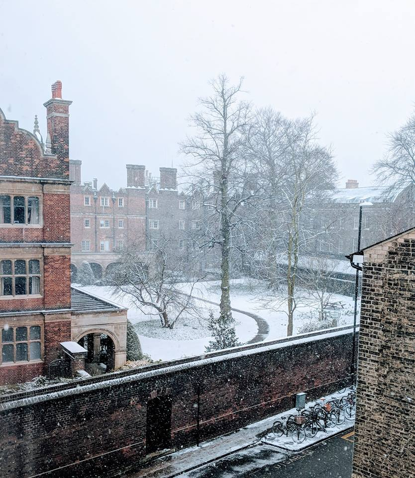A snowy Cloister Court taken from the College Office taken by Mark Lighterness, Accounts Officer