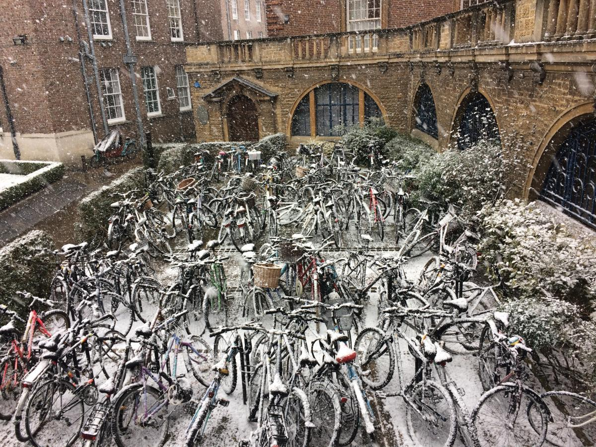 Bikes in the snow taken by Stephanie Clarke, I.T. Officer